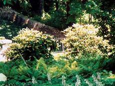 Garten- und Landschaftsbau, FH-Studium