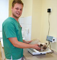 Tiermedizinische/r Fachangestellte/r