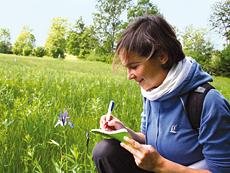 Umweltmonitoring, Studium